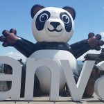 """Large inflatable panda with """"canvas"""" in white letters"""