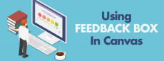 Using feedback box in canvas